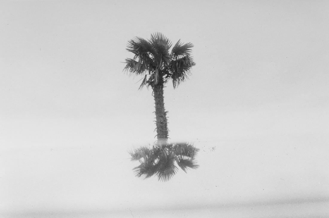 ALONE by Carol Díaz - Creative Work - $i