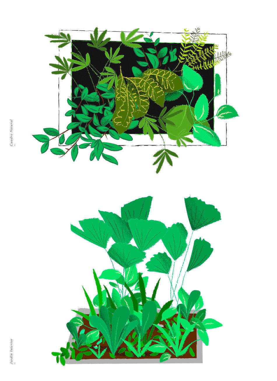 Intgarden by Fabiola Correas - Creative Work