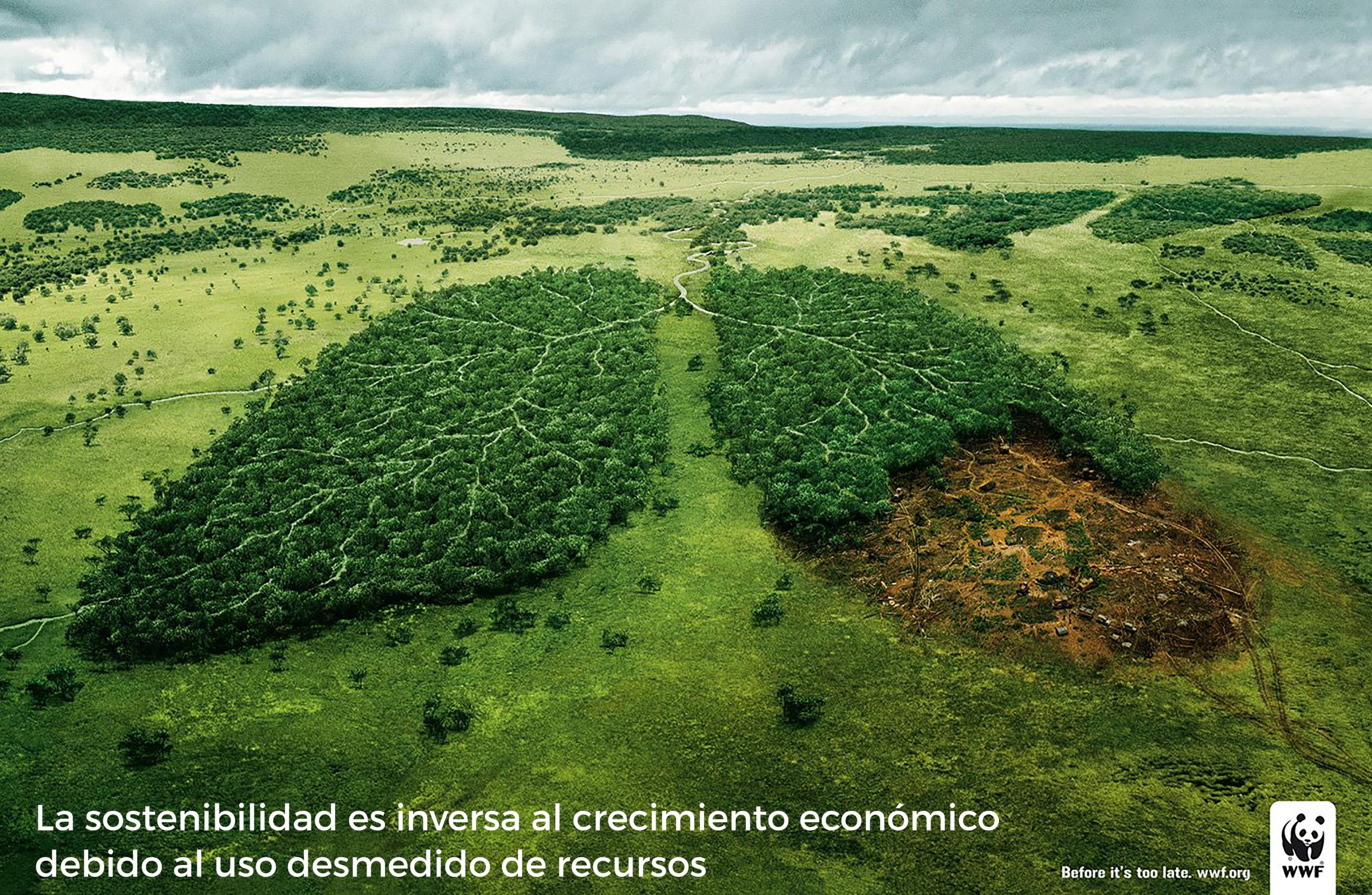 GREEN by Andrea Zalles - Creative Work - $i