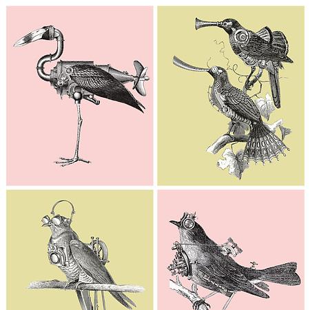 las aves del Cierzo, para Viñas Altas