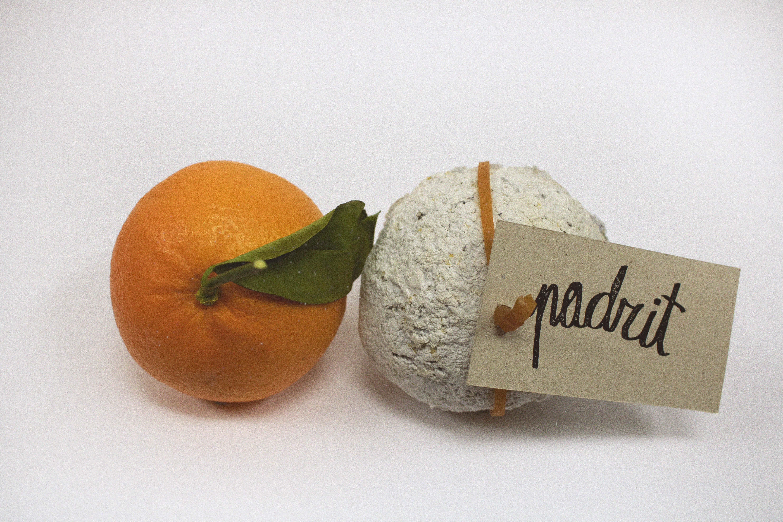 Podrit: envase ecológico de naranjas. by Isabel Maria Llull James - Creative Work - $i