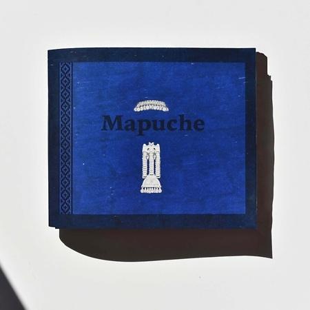 Mapuche, gente de la tierra