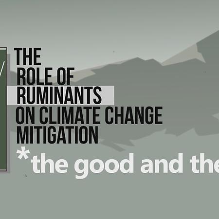 COP25 Infographics